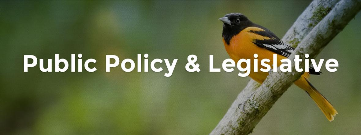 banner photo for public policy and legislative page